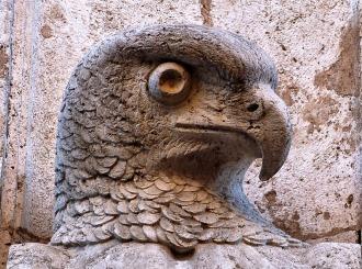 Falco in facciata